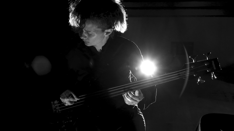 Bass Holograms